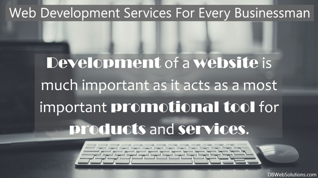 Why should I Hire a Web Development Company?